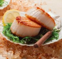 images/poissons/Scallops.jpg